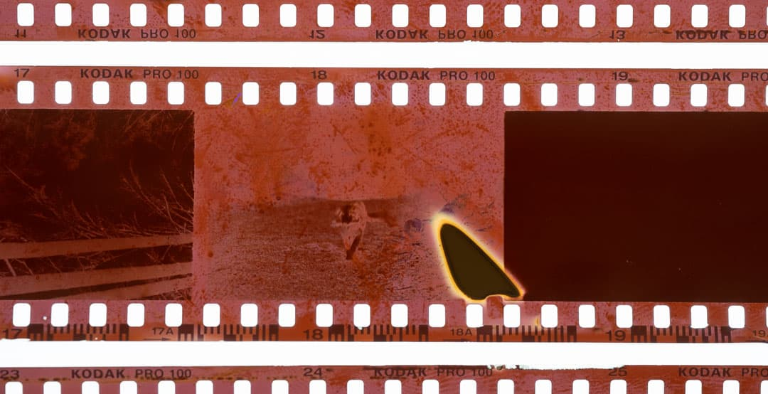 A film negative with a crescent shaped mark from pressure when loading the film onto a wet patterson reel.