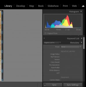 Lightroom Classic Metadata section in Library mode