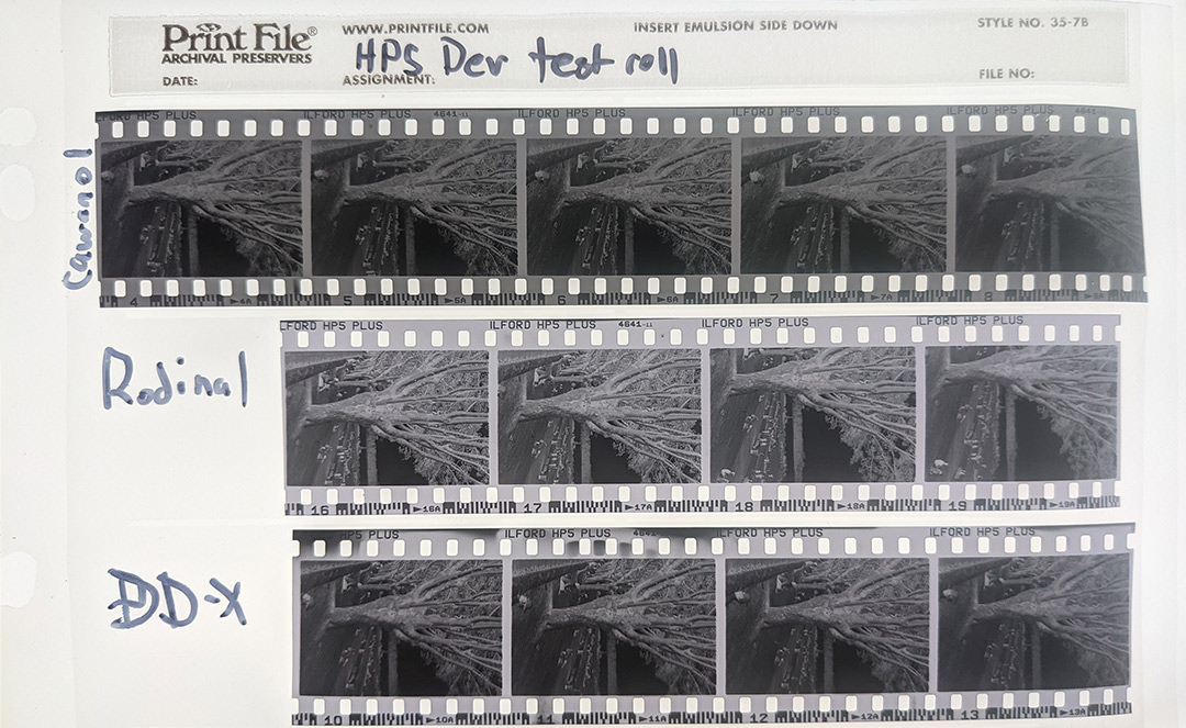 Cawanol vs. Rodinal and DD-X. Negatives from the same roll were developed in different developers to see how they differred.