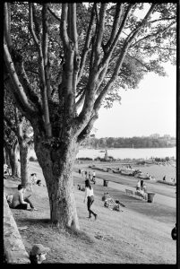 A photo developed in D-76 / ID-11